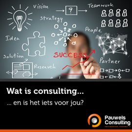 Wat is Consulting - Pauwels Consulting - b2