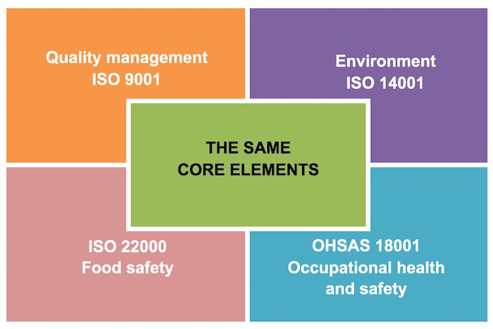 ISO 9001 2015 Core Elements - Pauwels Consulting